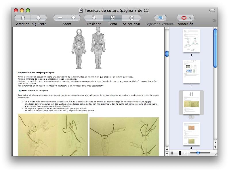 vista previa con un pdf